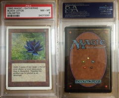 Black Lotus Graded PSA - 8 on Channel Fireball