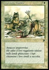 Tundra Wolves (Lupi della Tundra)