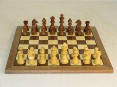 WorldWise Chess - 14