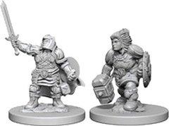 D&D Nolzur's Marvelous unpainted minis: Dwarf Paladin