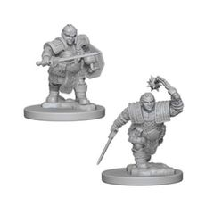 D&D Nolzurs Marvelous Unpainted Minis: Dwarf Female Fighter