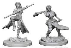 Dungeons & Dragons Nolzur`s Marvelous Unpainted Miniatures: W1 Human Female Monk