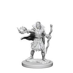 Pathfinder Deep Cuts Unpainted Miniatures: W1 Elf Male Sorcerer