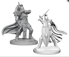 Pathfinder Deep Cuts Unpainted Miniatures: W6 Female Knights / Gray Maidens