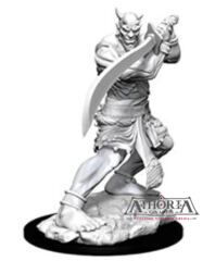 Dungeons & Dragons Nolzur`s Marvelous Unpainted Miniatures: W13 Efreeti