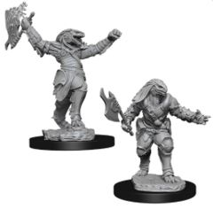 Dungeons & Dragons Nolzur`s Marvelous Unpainted Miniatures: W11 Female Dragonborn Fighter