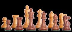 Grandmaster Series Chess Set in Sheesham - 4