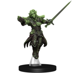 ELF GHOST Kingmaker Pathfinder miniatures