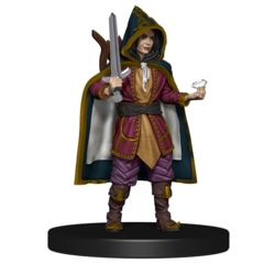Thief Guildmaster