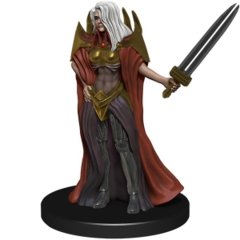 Whispering way Cultist Ruins of Lastwall Pathfinder Miniatures