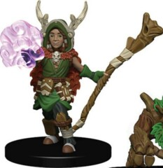 Boy Druid        Wardling Minis
