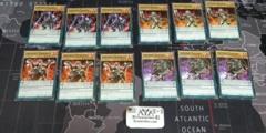 IGKNIGHT CORE COMMON PALADIN, SQUIRE, GALLANT, MARGRAVE 12 CARD CORE-EN029 LOT