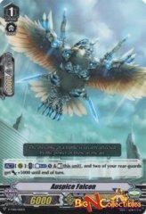 V-TD01/010EN - Auspice Falcon