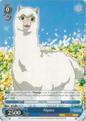 LL/EN-W01-097 U Alpaca