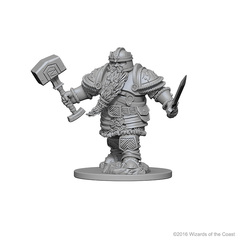 Dwarf Fighter (Male) (72616)