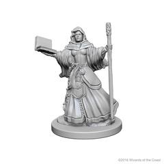 Human Wizard (Female) (72619)