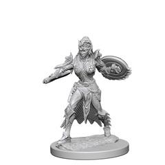 Elf Fighter (Female) (72599)