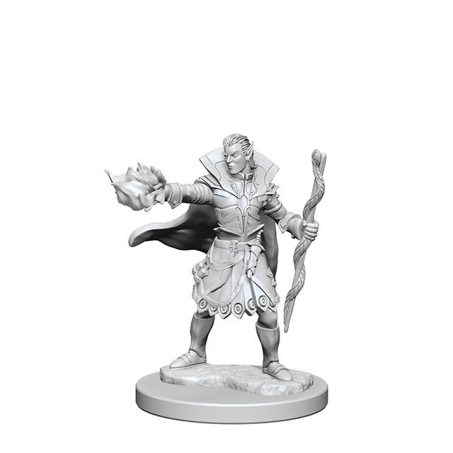 Elf Sorcerer (Male) (72605)