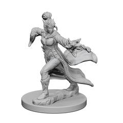 Elf Sorcerer (Female) (72606)