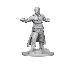 Human Monk (Male) (72612)