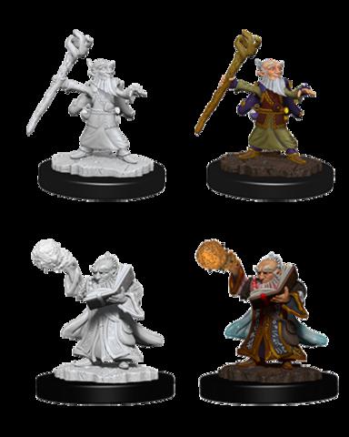Gnome Wizard (Male) (73382)