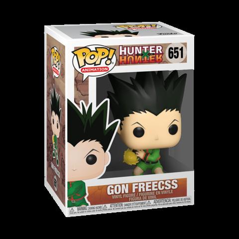 Hunter x Hunter - Gon Freecss #651