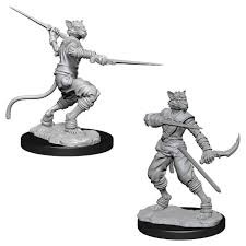 Tabaxi Rogue (Male) (73540)