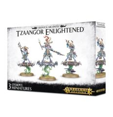 Tzeentch Arcanites - Tzaangor Enlightened (83-74)