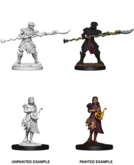 Yuan-Ti Pureblood Adventurers (73716)