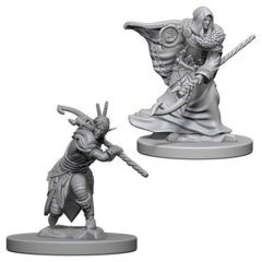 Elf Druid (Male) (72641)