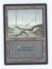 black bordered FBB Swamp frazier