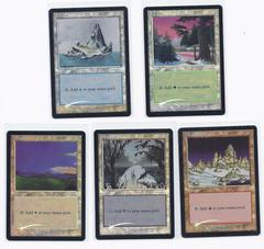 Ice Age FOIL DCI Arena 2001 basic lands set (1 of each)