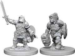 D&D Nolzur's Marvelous Unpainted Minis: Dwarf Female Paladin (pack of 2)