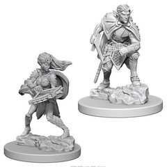 D&D Nolzur's Marvelous Unpainted Minis: Drow (pack of 2)