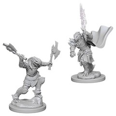D&D Nolzur's Marvelous Unpainted Minis: Dragonborn Female Fighters (pack of 2)