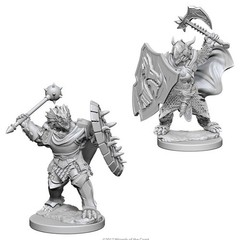 D&D Nolzur's Marvelous Unpainted Minis: Dragonborn Male Paladin (pack of 2)