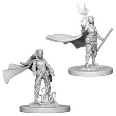 D&D Nolzur's Marvelous Unpainted Minis: Elf Female Druid (pack of 2)