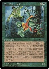 Erhnam Djinn - Japanese Chronicles