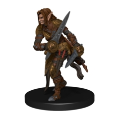 Elf Ranger b (swords)