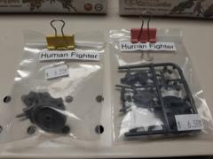Human Fighter Warrior Swordsman