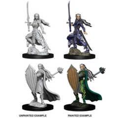 Nolzur's Marvelous Miniatures - Elf Paladin