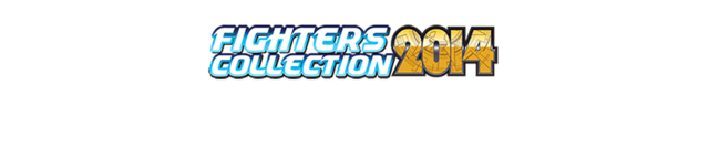 65fightercollection2014
