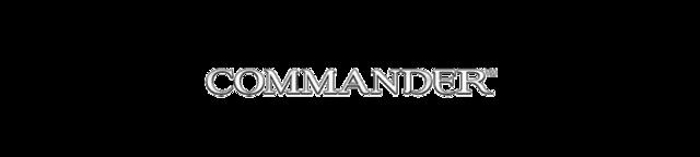 Magic-commander-2013