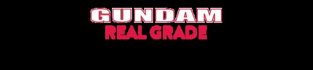Gundam-model-kit-real-grade