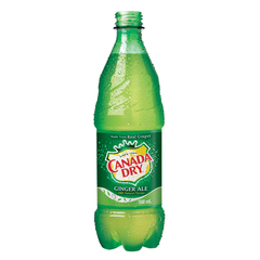 Canada Dry Bouteille 500ml
