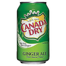 Canada Dry Canette 355ml
