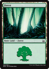 Forest (63)