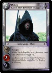 Duilin, Ranger from Blackroot Vale