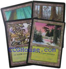 Forest Lot of 20