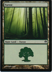 Forest (70)